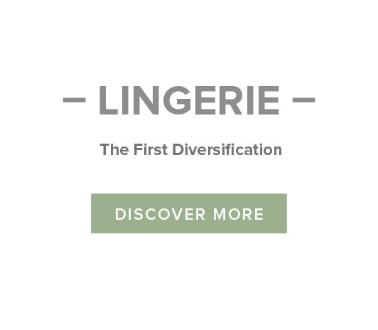 Lingerie Small Bottom image